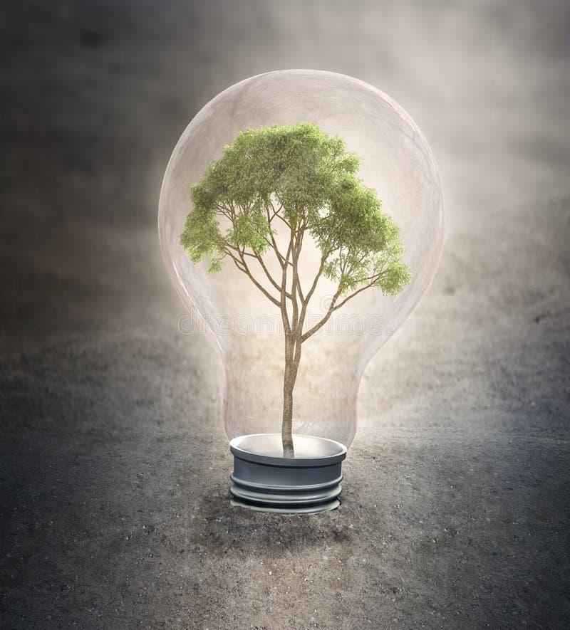 在电灯泡里面的小树- 向量例证