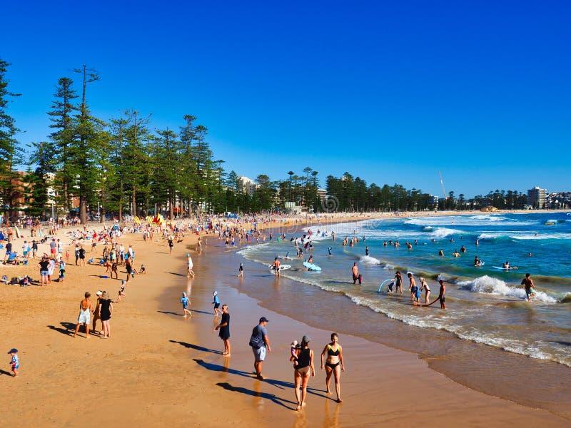在男子气概的海滩,悉尼,澳大利亚的夏天早晨 免版税库存照片