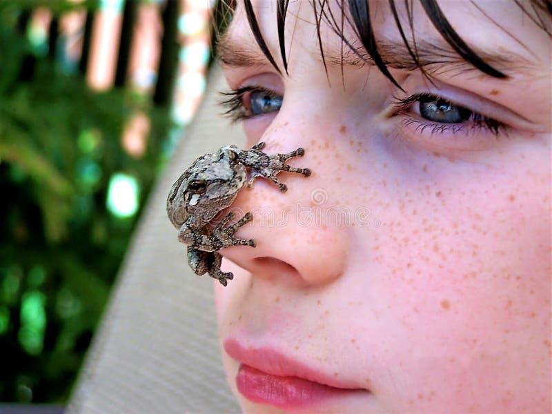 在男孩面孔的雨蛙 免版税图库摄影