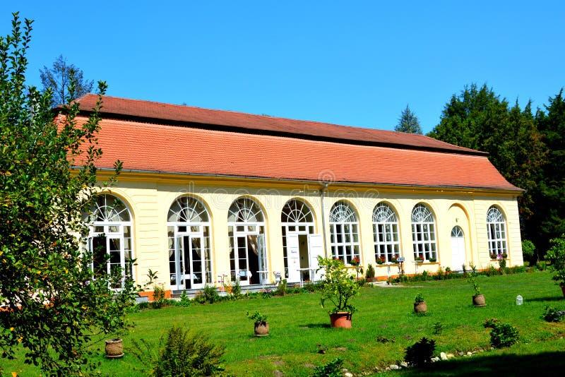 在男爵冯Brukenthal Palace的Orangerie在阿夫里格 免版税库存图片