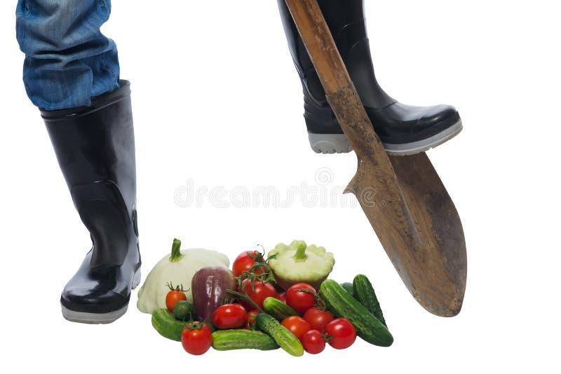 在疏散铁锹的底部的农夫脚和 免版税库存照片