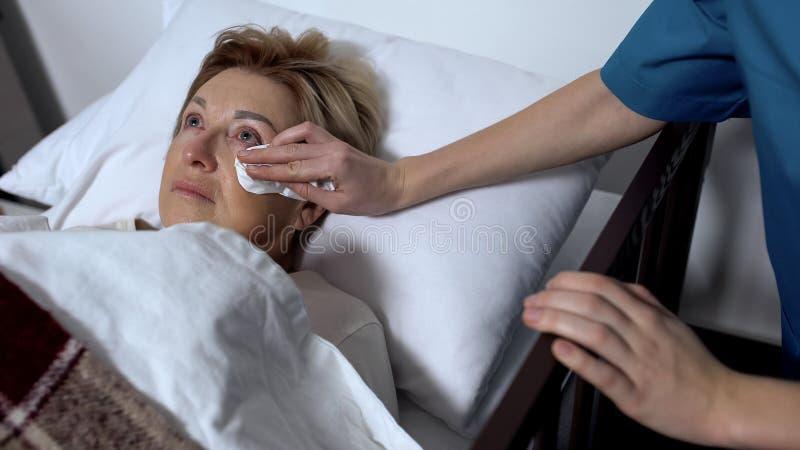 在病床的年长患绝症的女性患者志愿抹的泪花  免版税库存照片