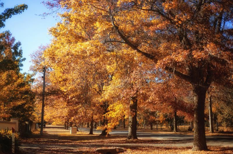 在登上Macedon的秋天 图库摄影