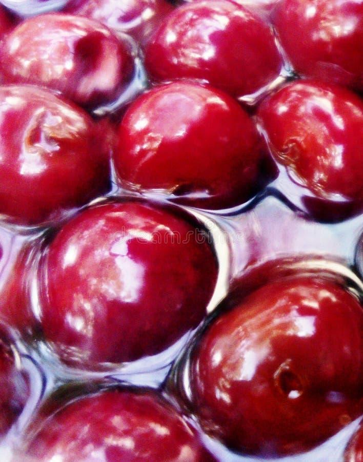 在白兰地酒的欧洲酸樱桃 免版税图库摄影