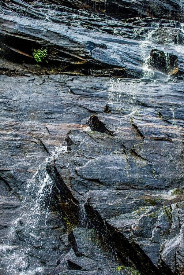 在白天夏天期间,山核桃属瀑布 图库摄影