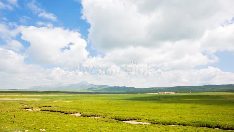 在白色云彩和蓝天下的高地草甸 免版税图库摄影