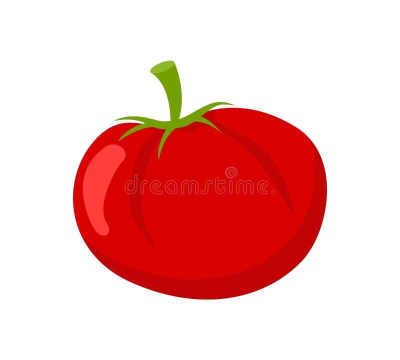 在白色传染媒介象隔绝的蕃茄成熟素食者 库存例证