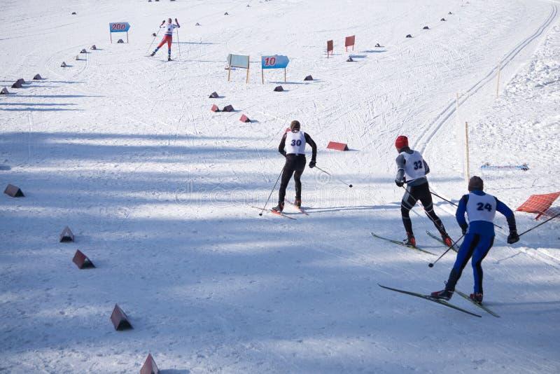 在白色冬天自然的越野滑雪 原始的体育照片,冬天比赛 库存照片