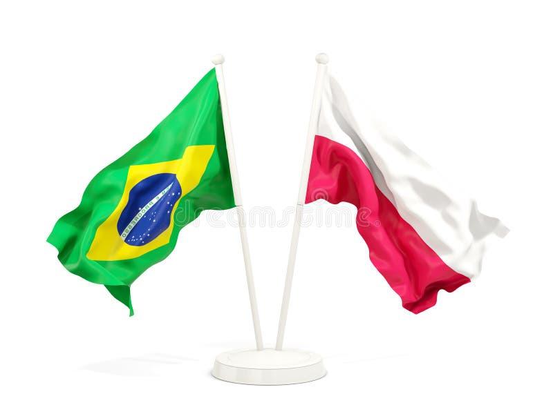 在白色和波兰的隔绝的两面挥动的旗子巴西 向量例证