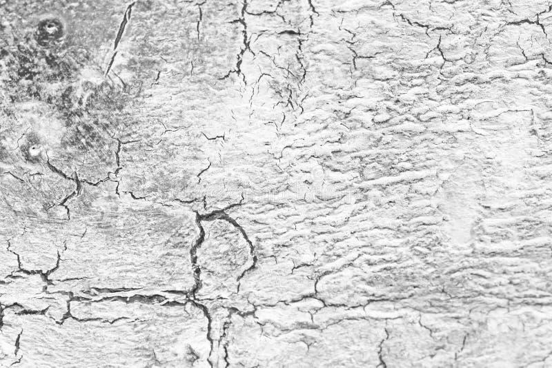 在白色和灰色背景的黑镇压 灰色和白色Backgr 图库摄影
