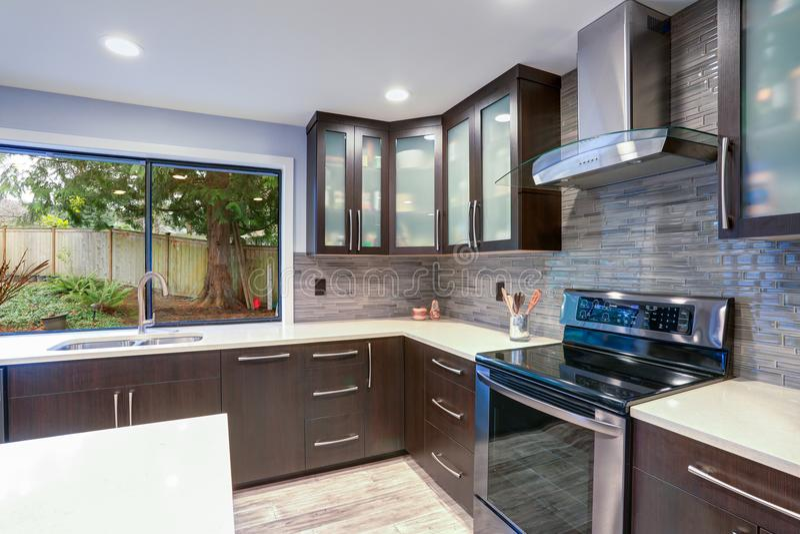在白色和黑暗的口气的更新当代厨房室内部 库存照片