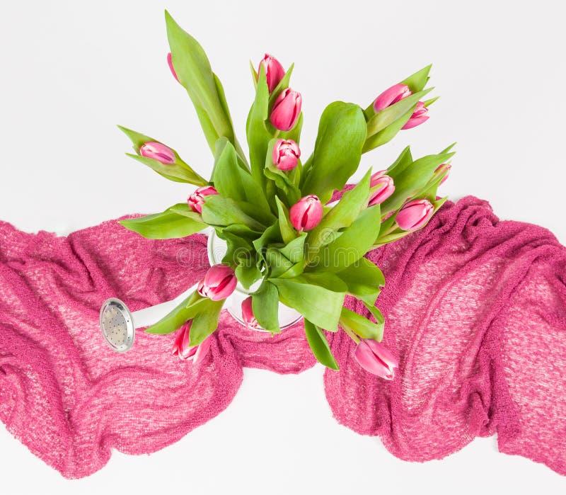 在白色喷壶的桃红色郁金香 免版税库存图片