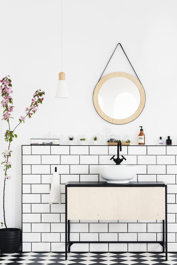 在白色墙壁上的圆的镜子在现代卫生间内部的水盆上与植物 实际照片 库存图片