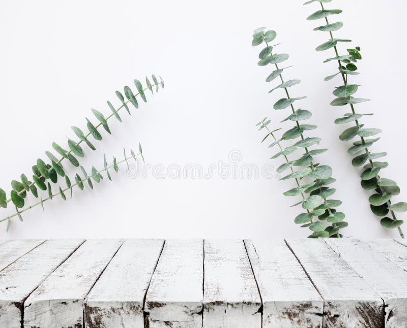 在白色墙壁上的木台式有树叶子背景 库存图片