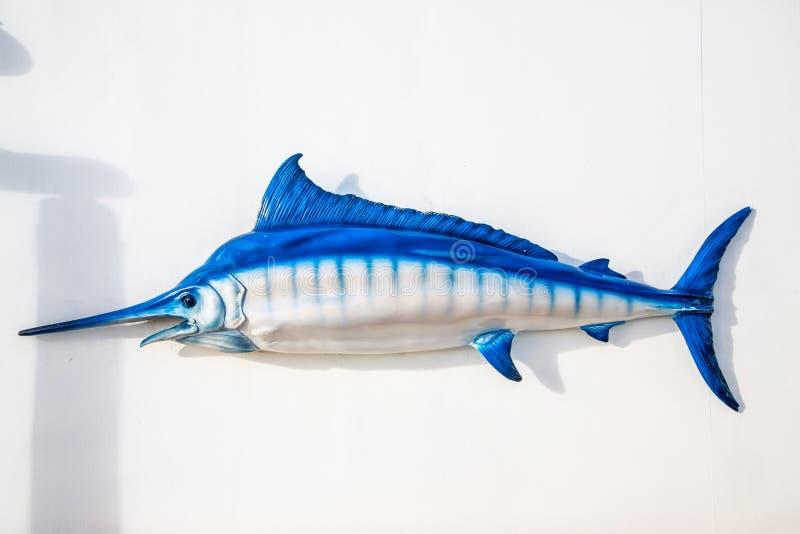 在白色墙壁上的蓝色和白色箭鱼 库存图片