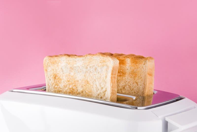 在白色多士炉的敬酒的多士面包在桃红色背景 免版税库存照片