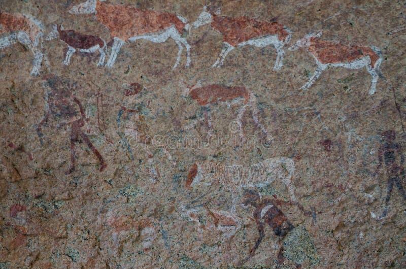 在白色夫人盘区, Brandberg, Damaraland,纳米比亚,南部非洲的详细的丛林居民或圣岩石绘画 图库摄影