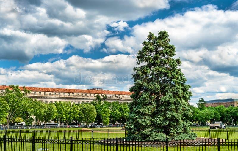 在白色家的华盛顿特区,前面的全国圣诞树 免版税库存照片