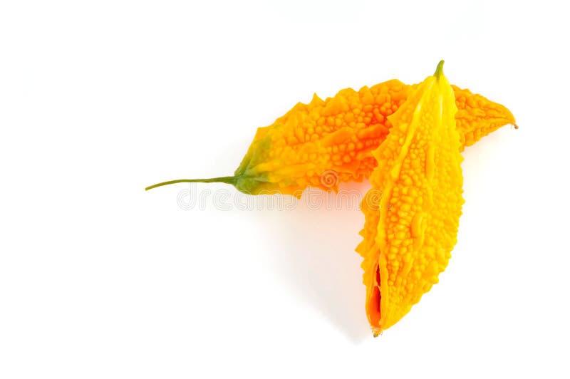 在白色或黄色苦瓜属隔绝的苦涩瓜 免版税库存照片