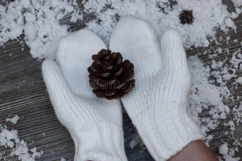 在白色手套的手拿着在a背景的一个大团  库存照片