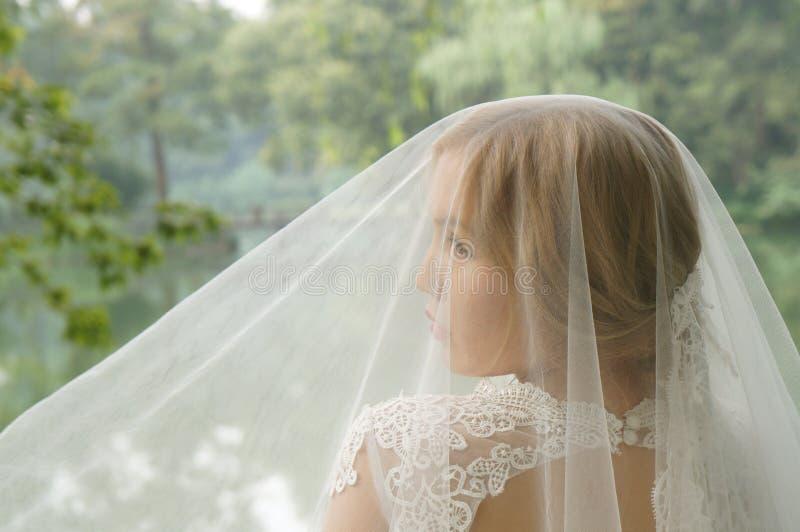 在白色有花边的婚礼面纱下的惊人的白肤金发的新娘 库存照片
