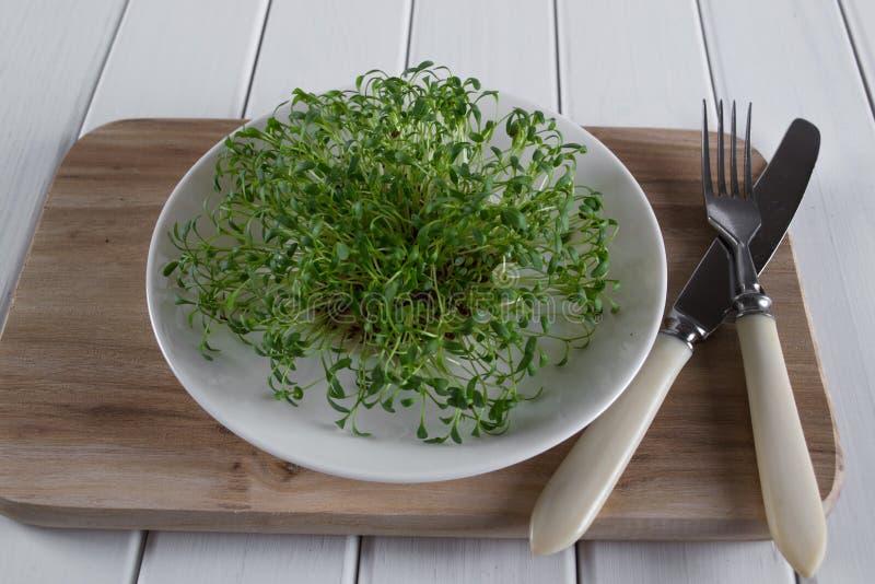 在白色板材的水芹有叉子和刀子的 食物健康素食主义者 库存照片