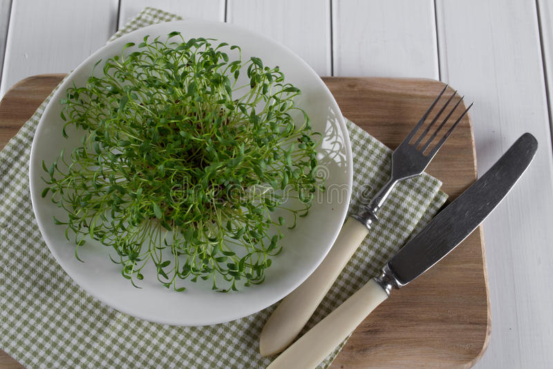 在白色板材的水芹有叉子和刀子的 食物健康素食主义者 库存图片