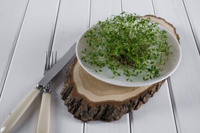 在白色板材的水芹有叉子和刀子的 食物健康素食主义者 免版税库存照片