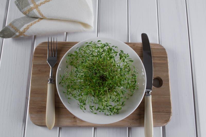 在白色板材的水芹有叉子和刀子的 食物健康素食主义者 免版税库存图片