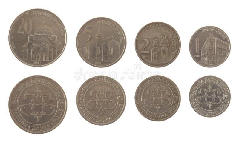 在白色查出的塞尔维亚人硬币 图库摄影