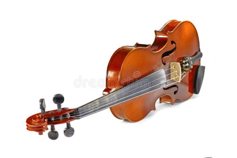 在白色查出的小提琴 免版税图库摄影