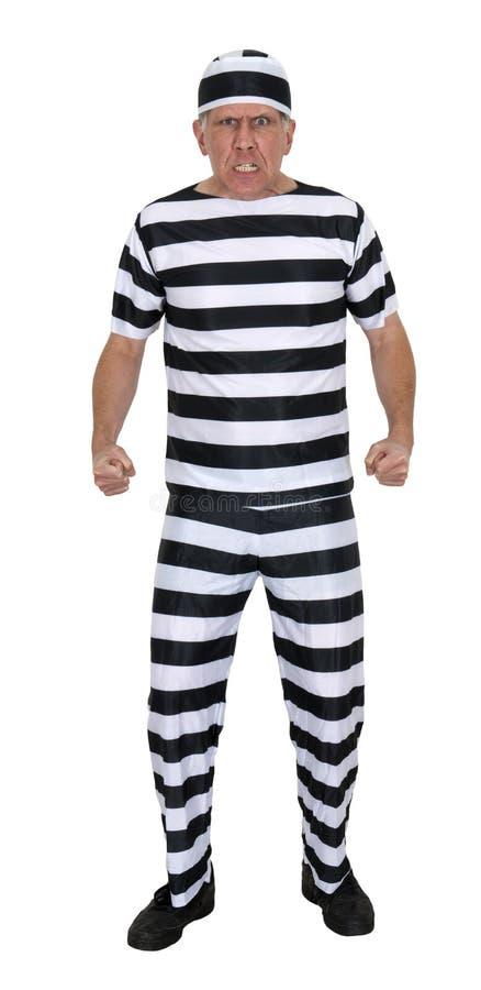 在白色查出的平均恼怒的证明有罪夜贼 免版税库存照片