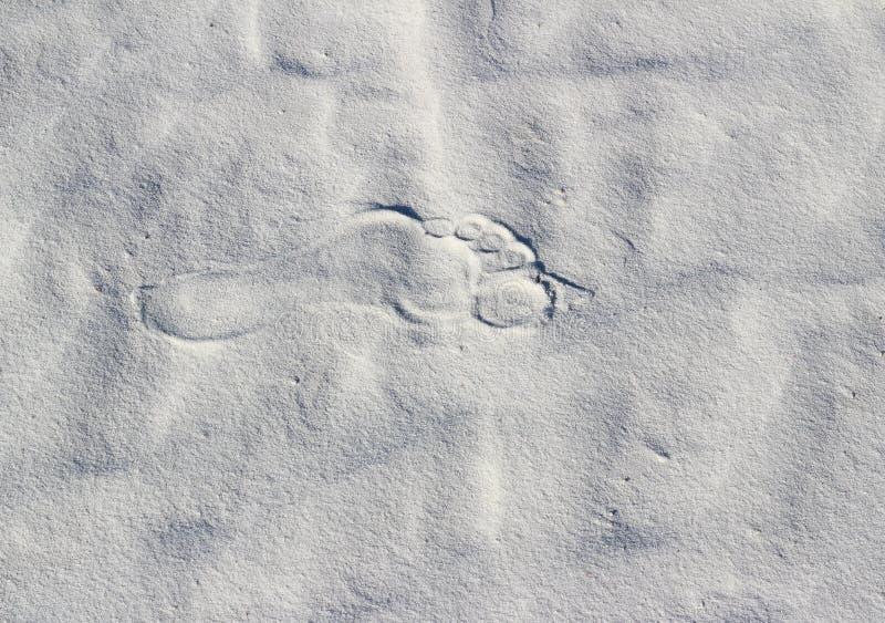 在白色沙子的孤立脚印 免版税库存照片