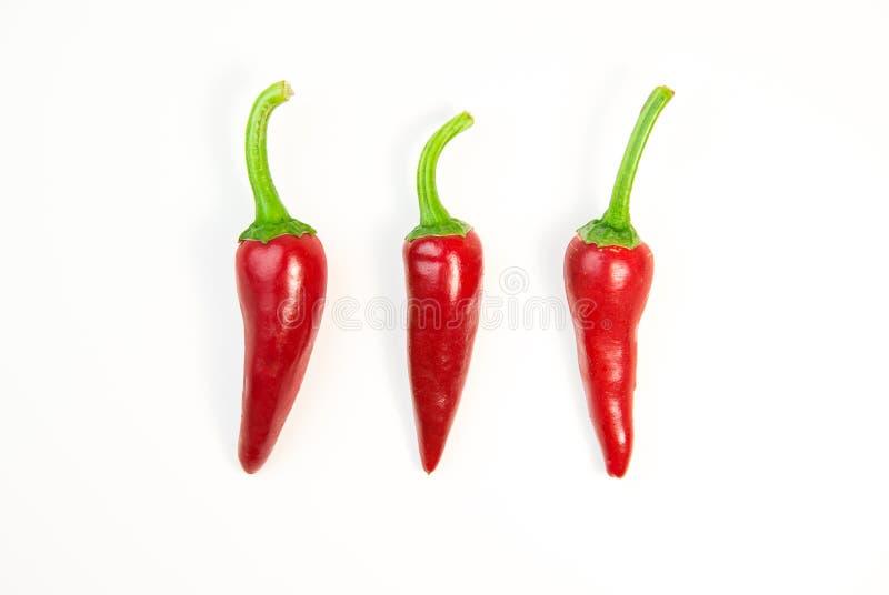 在白色的三个成熟红辣椒 免版税库存照片