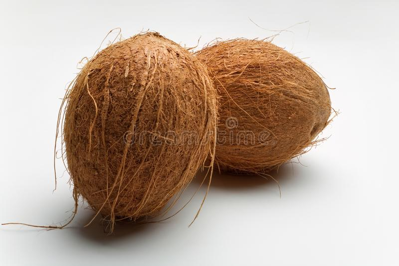 在白色的两个整个椰子 库存照片