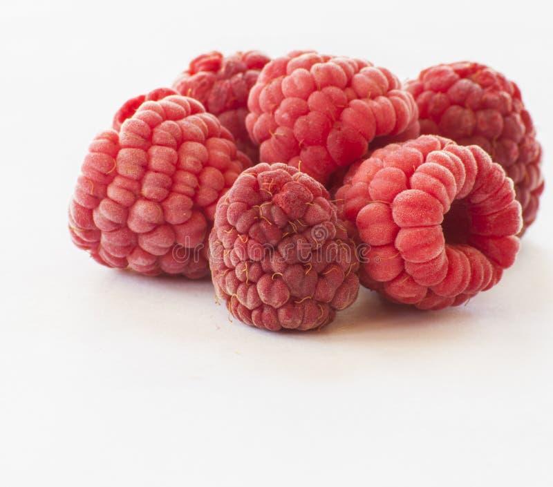 在白色的冷冻莓 免版税库存照片
