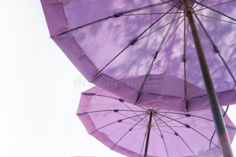 在白色的双重紫色大伞 库存照片