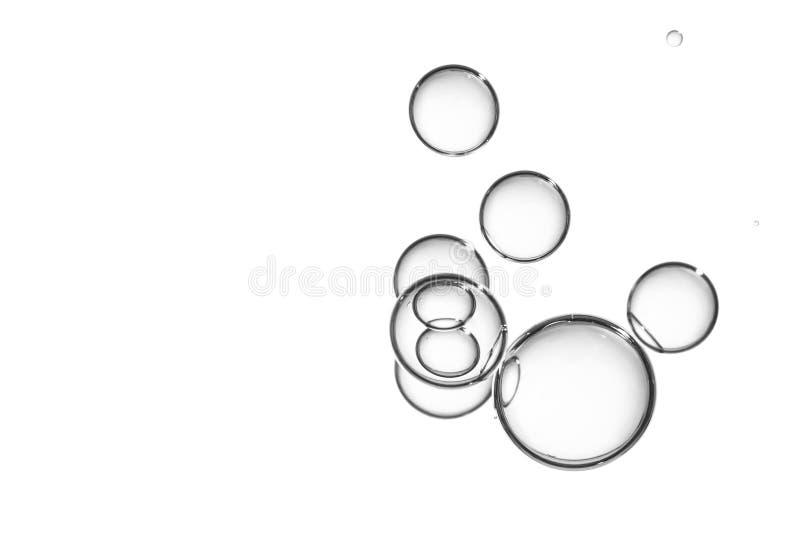 在白色的大清楚的泡影 图库摄影