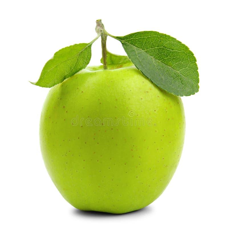 在白色的新鲜的绿色苹果 库存图片