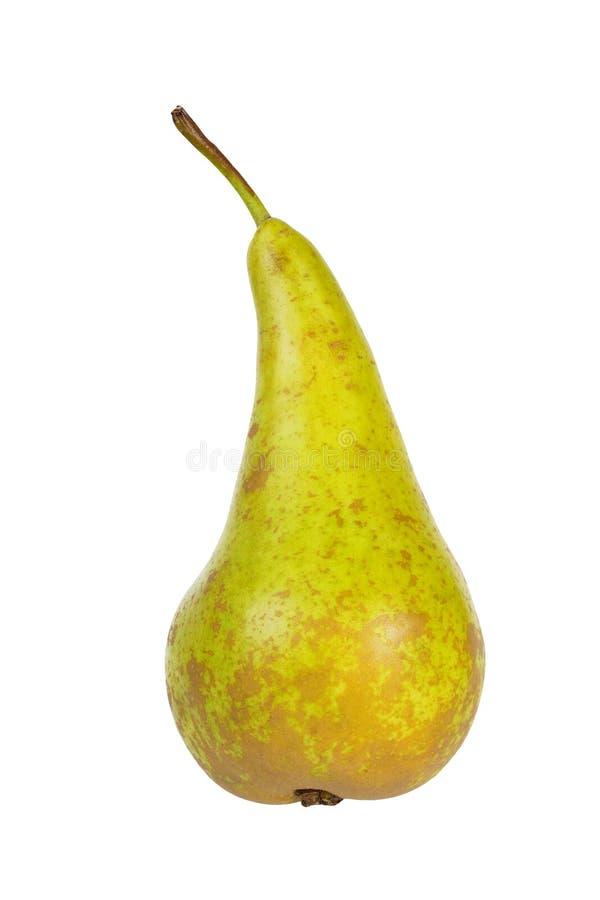 在白色的梨 免版税库存照片