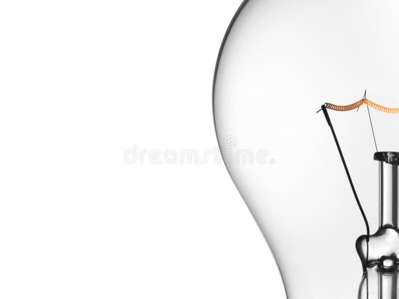 在白色的电灯泡光 免版税库存图片