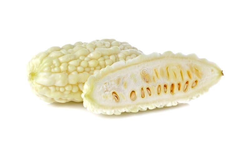 在白色的白色苦涩金瓜 库存图片