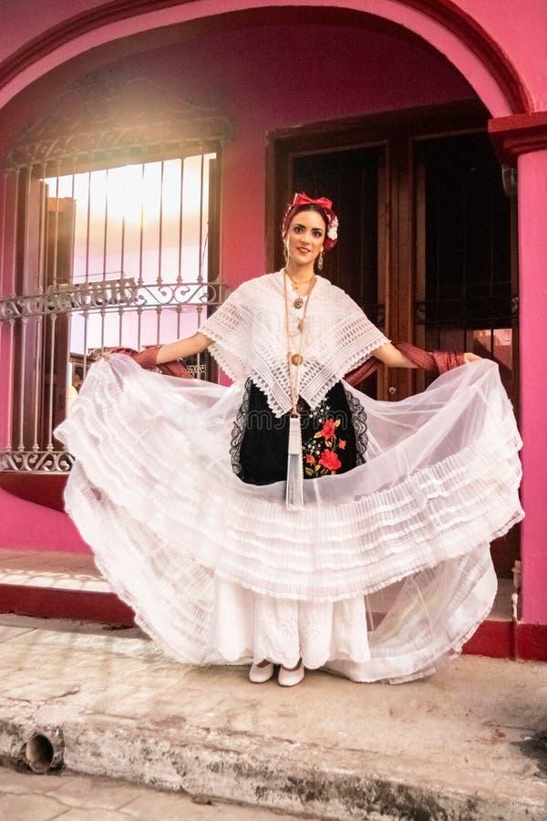 在白色的经典jarocha有桃红色背景 库存照片