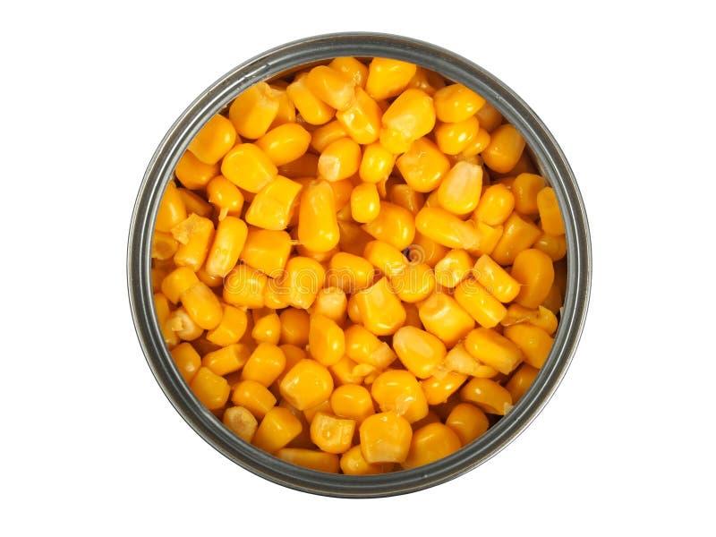 在白色的罐装玉米 免版税图库摄影