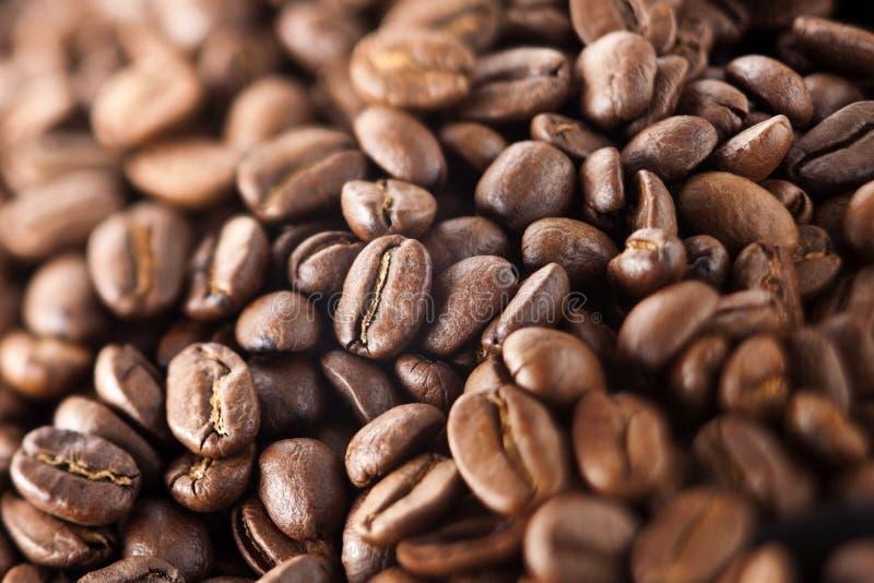 在白色的豆早餐咖啡理想的查出的宏指令 免版税库存照片