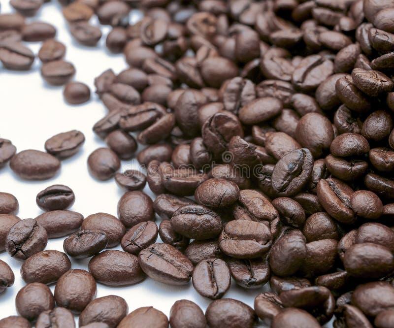 Download 在白色的豆早餐咖啡理想的查出的宏指令 库存图片. 图片 包括有 面包, 庄稼, 咖啡, 详细资料, 饮料 - 72372075