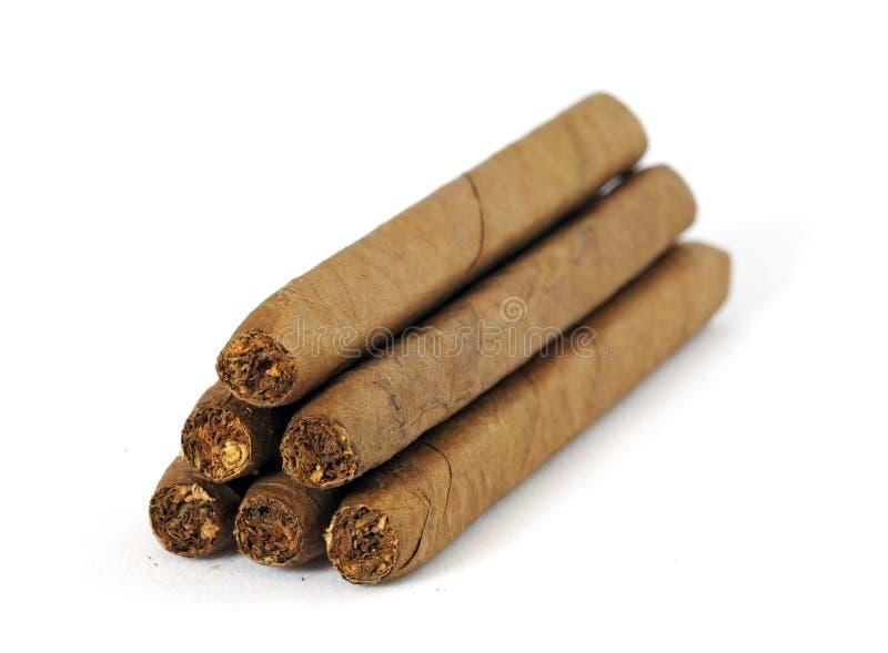 在白色的雪茄 库存照片