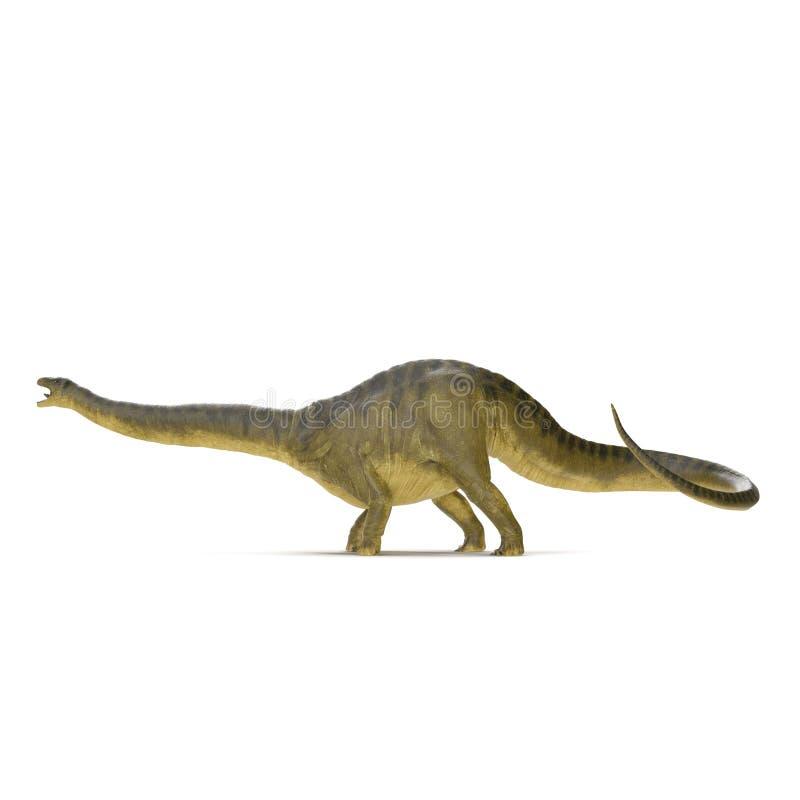 在白色的雷龙属恐龙 侧视图 3d例证 库存例证