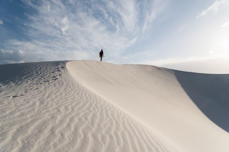 在白色的风景在Alamogordo,新墨西哥铺沙国家历史文物 库存照片