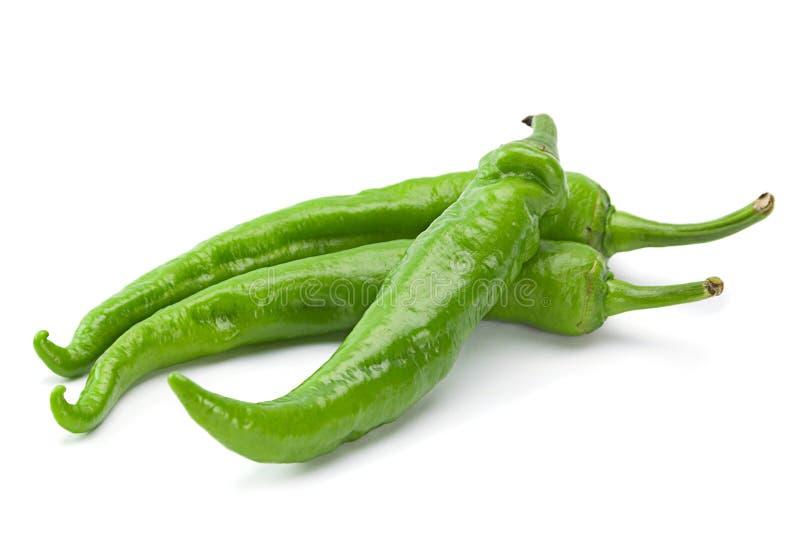 在白色的绿色辣椒 免版税库存图片